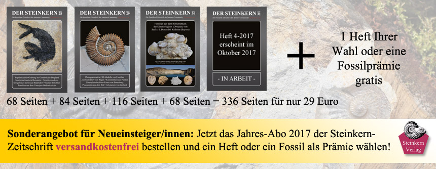 Informationen zum Abonnement der Steinkern-Zeitschrift
