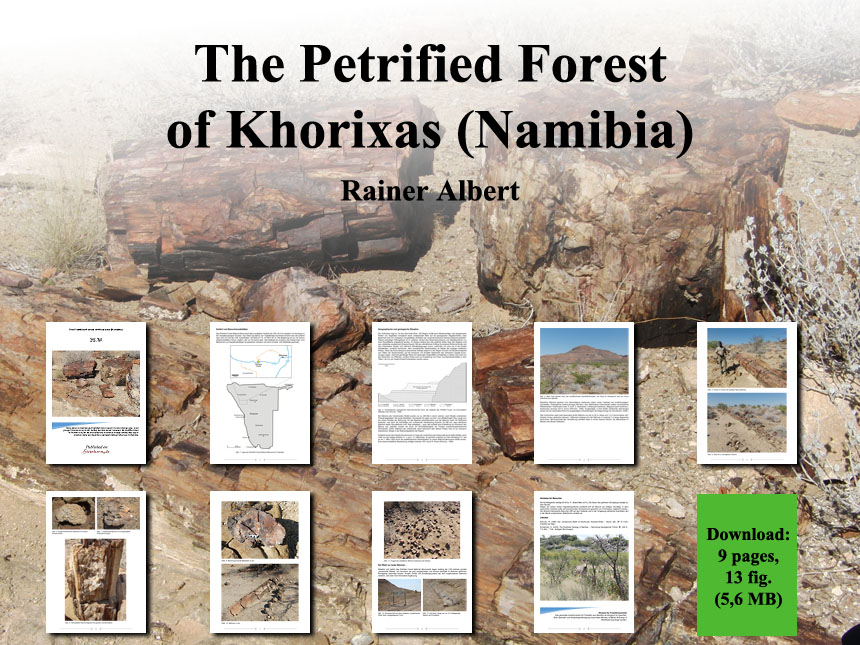the-petrified-forest-of-khorixas