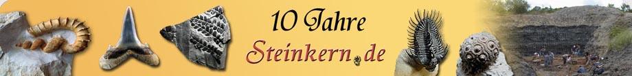 steinkern-newsletter-logo-2014