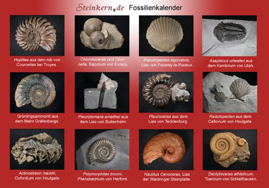 kalender2011_vorschaugrafik.jpg