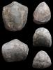 Brachiopode Hypothyridina cuboides (SOWERBY, 1840)