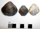 Habrobrochus subsella (Leymerie 1846)