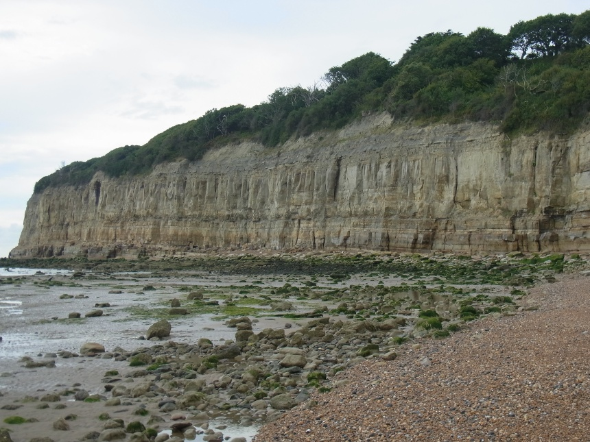 Radiokarbondatierung von Fossilien
