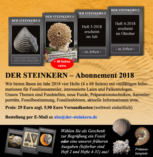 die fossilien community steinkern zeitschrift. Black Bedroom Furniture Sets. Home Design Ideas