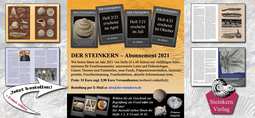 Steinkern - Abonnement