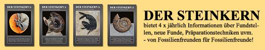 Der Steinkern - Die Fossilien-Zeitschrift der Internet-Community Steinkern.de
